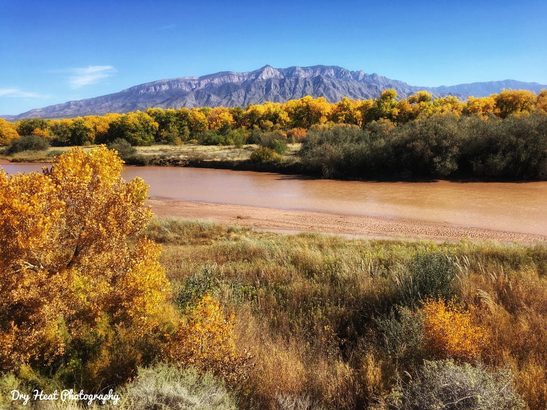 Rio Grande River Bosque and Sandia Mountains as seen from Rio Rancho, New Mexico. Dry Heat Photography