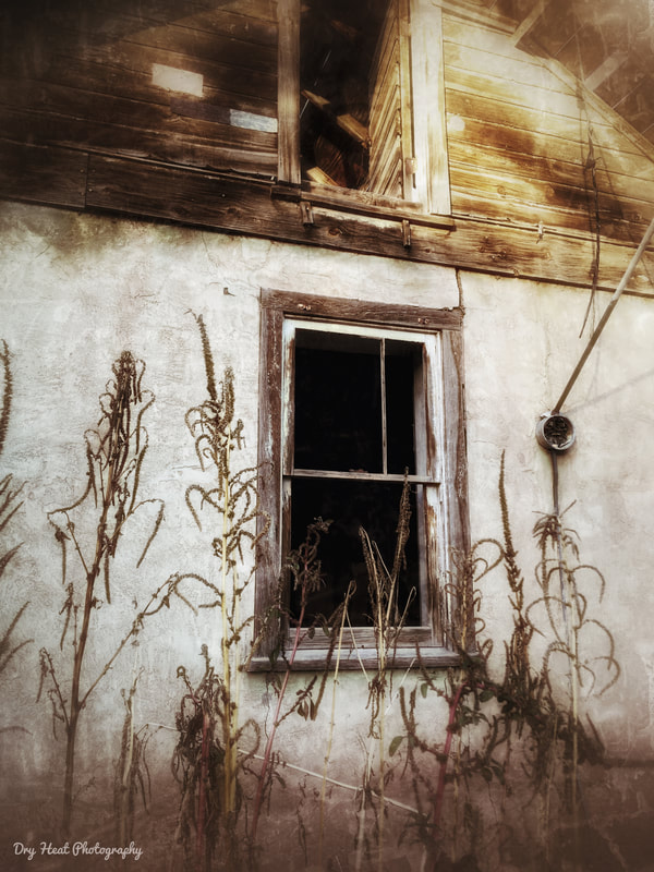 abandoned house in Corrales, New Mexico