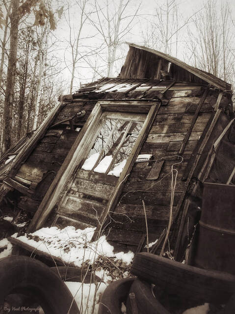 Abandoned house in Navarino, Wisconsin.Picture